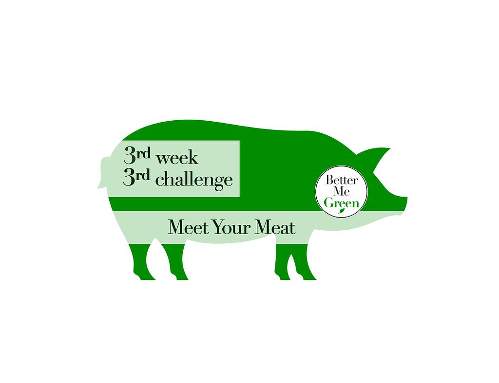 Challenge#3