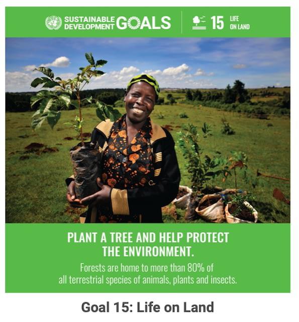 SDG-Goal15
