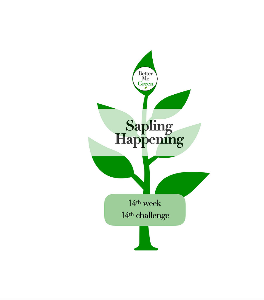 Better Me Green - Sapling Happening